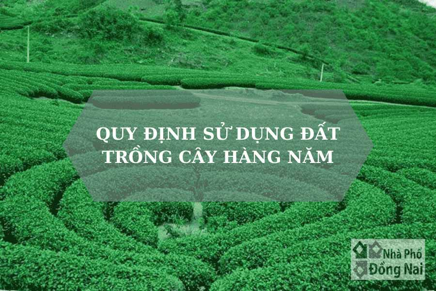 quy-dinh-su-dung-dat-trong-cay-hang-nam